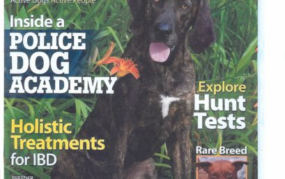 Adlerhorst in Dog World Magazine